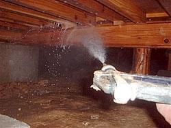 被害が無い場合の床下木部処理